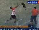 Sốc với cảnh cầu thủ bóng đá ném chó khỏi sân