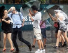 Bão Utor đổ bộ Hồng Kông, gây gián đoạn giao thông hàng không
