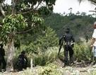 Phi công Mỹ, hành khách thiệt mạng trong tai nạn máy bay tại Indonesia