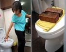 Singapore: Kinh hoàng trăn chui từ bồn cầu lên cắn người
