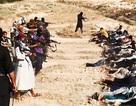 Al-Qaeda ở Syria: IS và Mặt trận Al Nusrah - Kỳ 2: Nở rộ trong thời loạn