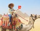Tình nguyện ở Ai Cập