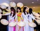 Lễ hội mùa xuân của du học sinh Việt tại Anh quốc