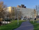 Học bổng Excellence đến Hà Lan của trường Đại học Leiden