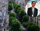 """Thạc sĩ Việt tại Pháp: """"Quản lý cây xanh đô thị - Ví dụ từ Paris"""""""
