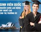 Những lộ trình định cư Úc phù hợp cho sinh viên Việt Nam