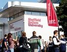 Thảo luận chiến lược kinh doanh cùng Online chat với trường Sheffield Hallam University (SHU)