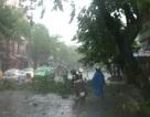 Bão chưa vào, Đà Nẵng - Quảng Nam đã mưa ngập, cây đổ ngổn ngang
