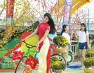 """Giới trẻ Đà thành """"khoe"""" ảnh Tết sớm với đường hoa xuân"""