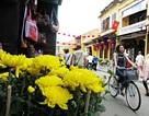 Hội An tạm ngưng bán vé tham quan phố cổ dịp Tết