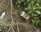 Ruộng rau sạch la liệt bao bì thuốc bảo vệ thực vật