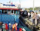 6 người gặp nạn trên biển sung sướng vì cập bờ an toàn