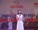 Hoa hậu Hoàn vũ Phạm Hương làm diễn giả tập huấn định hướng nghề nghiệp