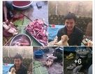 Phẫn nộ với hình ảnh thanh niên khoe cảnh giết hàng loạt khỉ trên Facebook