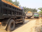 Nghệ An: Dân khốn khổ vì xe tải chở đất cày nát đường