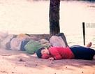 Bức ảnh giấc ngủ đường phố gây xúc động cộng đồng mạng