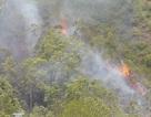 Cháy rừng keo khu vực tiếp giáp Trung đoàn Không quân