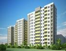 Bình Định: Hơn 130 tỉ đồng xây dựng nhà ở cho người thu nhập thấp