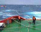 Hàng loạt tàu cá Bình Định gặp nạn trên biển