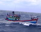 Thuyền trưởng bị liệt nửa người khi đánh bắt trên vùng biển Trường Sa