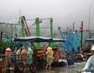 Kêu gọi tàu thuyền di chuyển khỏi vùng ảnh hưởng bão số 7