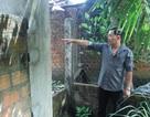 Bình Định: Bi hài chuyện gia đình có nhà mà không lối đi (!?)