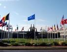 """Tướng NATO thừa nhận lực lượng mũi nhọn NATO """"quá mong manh"""" trước Nga"""