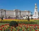Điện Buckingham của Anh bị đột nhập