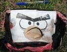 Phát hiện vật dụng cá nhân nghi của hành khách máy bay MH370