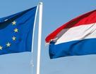 Hà Lan thu hơn 56.000 chữ ký cho cuộc trưng cầu rời EU