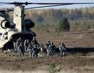 """NATO """"tăng gấp đôi"""" hoạt động quân sự áp sát biên giới Nga"""