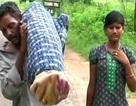 Ấn Độ: Người đàn ông nghèo vác xác vợ đi bộ 12 km