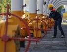 Mỹ cảnh báo châu Âu về sự phụ thuộc vào nguồn cung năng lượng của Nga