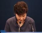 Thăm dò: Tổng thống Hàn Quốc nhận được 0% tỷ lệ ủng hộ của người trẻ