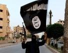 IS chiếm 3 tổ hợp phóng tên lửa đất đối không từ quân đội Syria