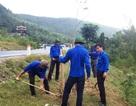 Ra mắt Đội bảo vệ môi trường tại khu mộ Đại tướng Võ Nguyên Giáp