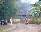 Đoàn làm phim Kong: Skull Island gửi thư cảm ơn Công an Quảng Bình
