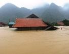 Quảng Bình thiệt hại quá nặng nề do mưa lũ