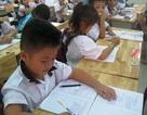 Cấm luyện thi chứng chỉ quốc tế tiếng Anh bậc Tiểu học