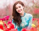 MC Thùy Linh xinh đẹp giữa sắc hoa đào