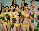 Các cuộc thi Hoa hậu sẽ bị giảm bớt, siết chặt?