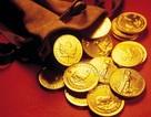 Dọn rác dưới đáy biển, bất ngờ tìm thấy kho báu tiền vàng
