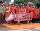 Lần đầu tiên chấm điểm công tác tổ chức, quản lý lễ hội dân gian Việt Nam