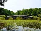 Công viên bỏ hoang của Việt Nam bỗng gây sốt trên báo phương Tây