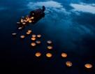 Chiêm ngưỡng những bức ảnh đẹp nhất về Việt Nam tại giải ảnh quốc tế