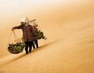 Việt Nam trong những bức ảnh gây sốt của một bác sĩ