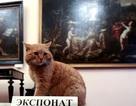 """Viện bảo tàng gây sốt vì nhận mèo làm… """"nhân viên"""""""