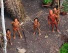 """""""Người rừng Amazon"""" quyết từ bỏ văn minh để được về rừng"""