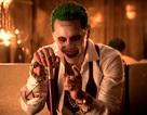 10 phim ăn khách nhất năm 2016 có sự trùng hợp kỳ lạ