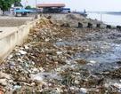 Kinh hoàng bãi rác khổng lồ nơi cửa biển